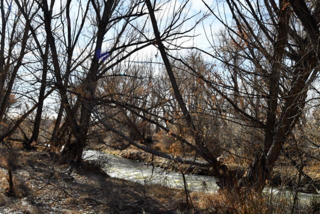 Fountain Creek Regional Park, Colorado Springs