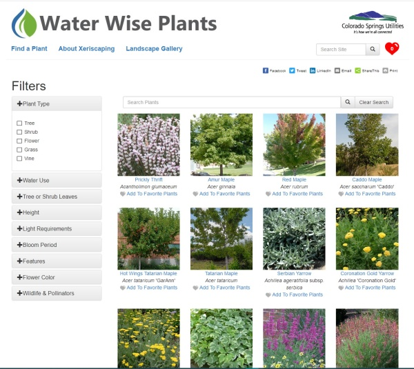 waterwise - find a plant