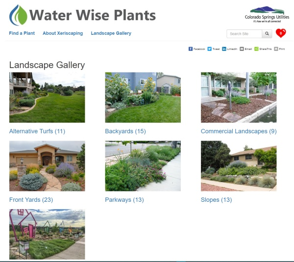 Waterwise - plant gallery