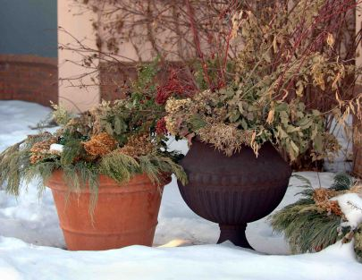 Winter containers, Denver Botanic Gardens